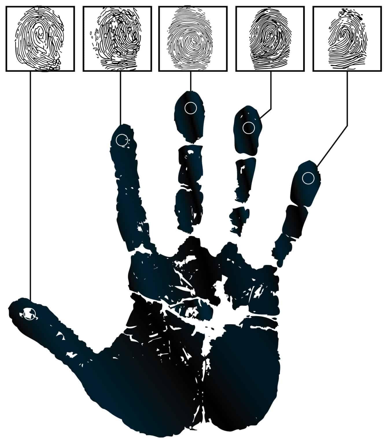 Vector handprints and five fingerprints